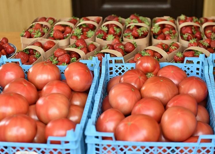 На Кубани малые формы хозяйствования ежедневно реализуют порядка 70 тонн овощей